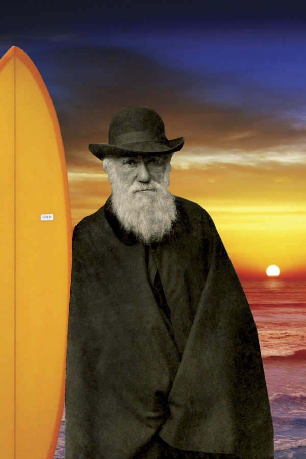 Darwin-at-the-beach_Indras-Net-Theater_Berkeley-CA-600x900